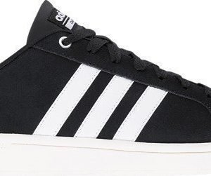 Adidas M Cf Advantage Clean tennarit