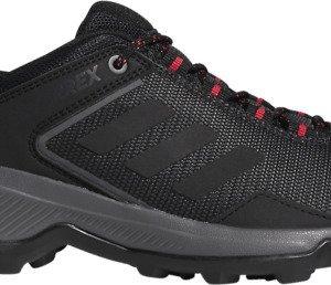 Adidas Terrex Entry Hiker Gtx Kävelykengät