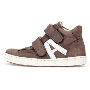 Angulus sneakerit