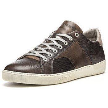 Bjorn Borg kengät matalavartiset tennarit