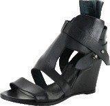 Black Lily kuma shoe black