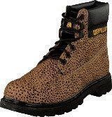 Cat Colorado Peat Blk Dot Print Hair