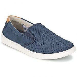 Clarks NEWOOD EASY tennarit