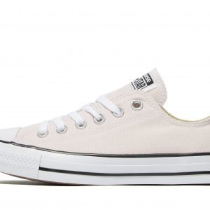 Converse All Star Ox Bright Rose