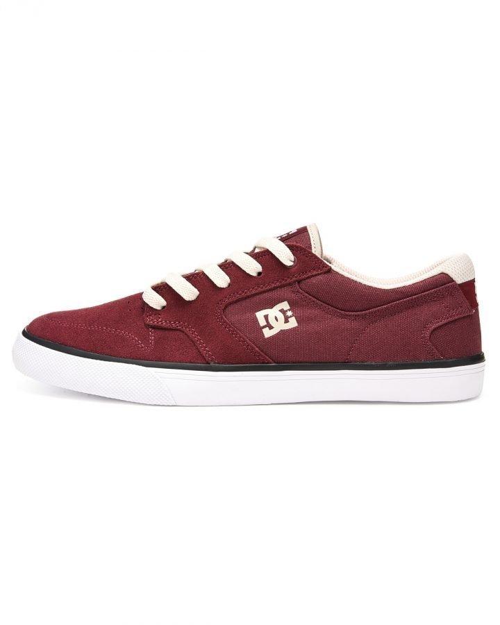 DC Argosy sneakerit