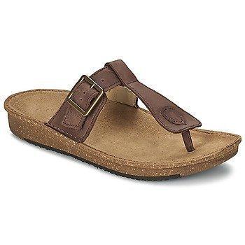 El Naturalista CONTRADICION sandaalit