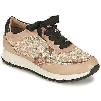 KG by Kurt Geiger LACEY matalavartiset tennarit
