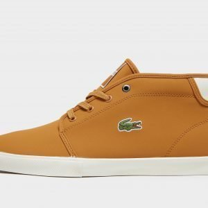 Lacoste Ampthill Tan