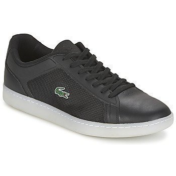 Lacoste ENDLINER 416 1 matalavartiset tennarit