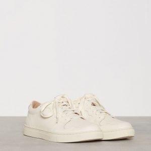 Polo Ralph Lauren Jeston Sneakers Tennarit Creme