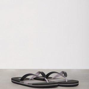 Polo Ralph Lauren Whitlebury II Sandals Sandaalit Musta