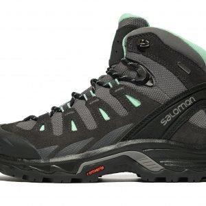 Salomon Quest Prime Gtx Hiking Boots Musta