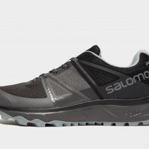 Salomon Trailster Gtx Harmaa