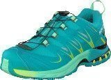 Salomon XA PRO 3D GTX® W 10-YR LTD Real Blue/ Lucite Green