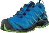 Salomon Xa Pro 3D Gtx Union Blue/Methyl Blue/Gr
