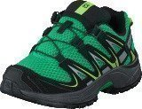Salomon Xa Pro 3D K Real Green/Black/Gr