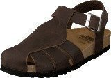 Scholl Sisare Brown