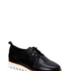 Shoe shi bar Alger