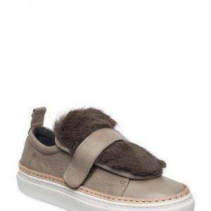 Shoe shi bar Bear