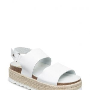 Shoe shi bar Bio2