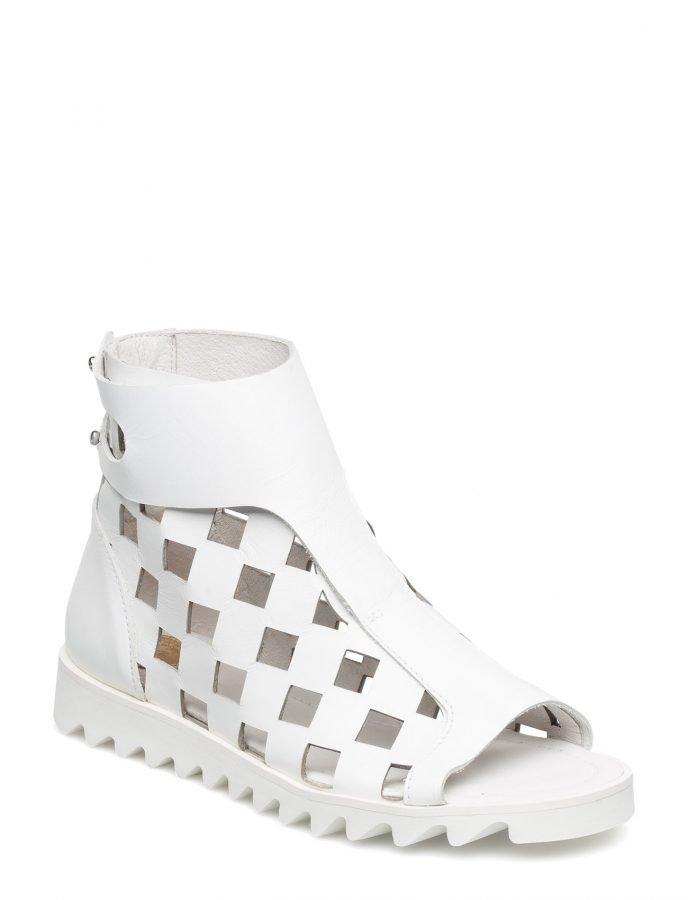 Shoe shi bar Sparta