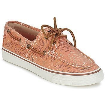 Sperry Top-Sider BAHAMA FISH CIRCLE purjehduskengät