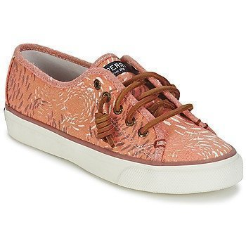 Sperry Top-Sider SEACOAST FISH CIRCLE matalavartiset tennarit