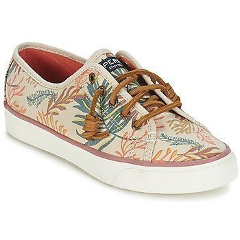 Sperry Top-Sider SEACOAST SEAWEED PRINT matalavartiset tennarit