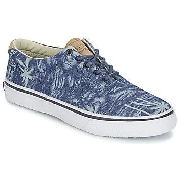Sperry Top-Sider STRIPER CVO CHAMBRAY matalavartiset tennarit