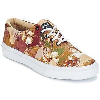 Sperry Top-Sider STRIPER CVO HAWAIIAN matalavartiset tennarit