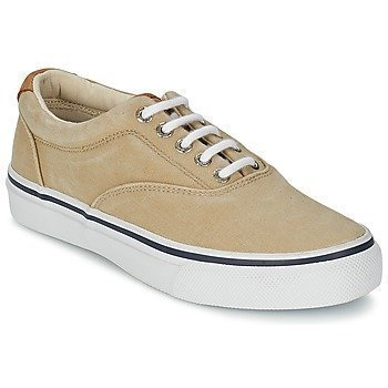Sperry Top-Sider STRIPER CVO matalavartiset tennarit