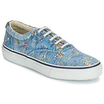 Sperry Top-Sider STRIPER HAWAIIAN matalavartiset tennarit