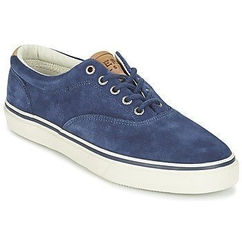 Sperry Top-Sider STRIPER LL CVO SUEDE matalavartiset tennarit