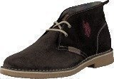 U S Polo Assn Amadeus 6 Dark Brown