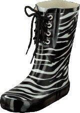 Wildflower Midir Zebra